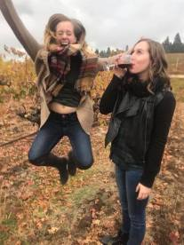Apple hill & Wine tasting day